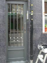 Puerta Modelo 11